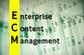ECMとは?その基本や文書管理システムとの違いを解説